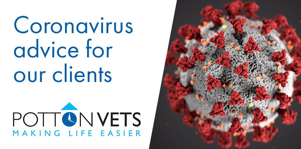 Coronavirus advice for Potton Vet's clients